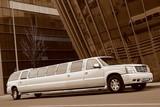 Limuzinu nuoma   10. CADILLAC ESCALADE      mehr als 20 Sitze  Außergewöhnliche Ausblicke, ungewöhnliche und nette Innenausstattung: so wird die Aufmerksamkeit und die Begeisterung von den Leuten angesprochen. Das ist eine Limousine, die ihren außergewöhnlichen Stil besitzt und die keinen daran zweifeln lässt.